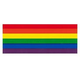 Pride Items Sticker Arc-en-ciel 12.5 x 5 cm